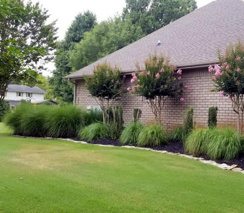Paragould Affordable Lawn Care and Maintenance